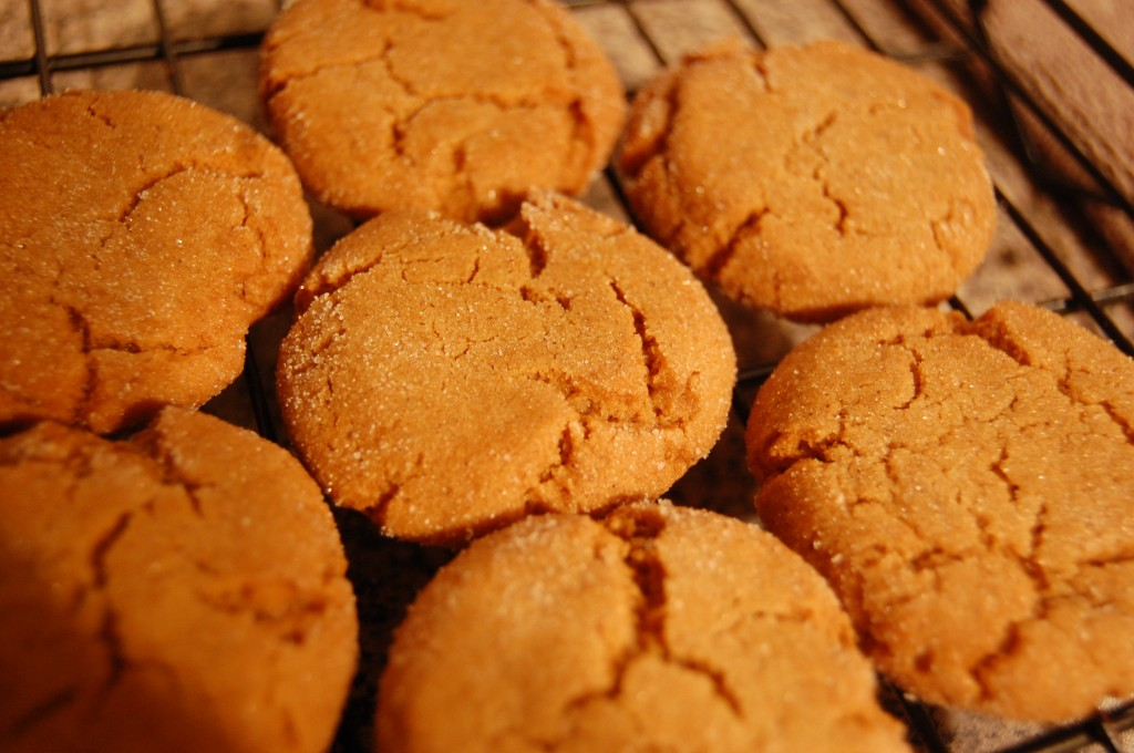 Gingersnaps Recipe Two Clever Moms
