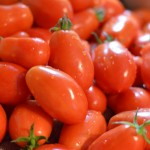 Saving the Harvest: Eggplant and Tomatoes