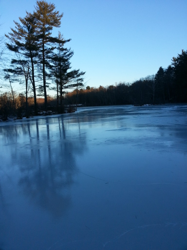 ice fawn lake