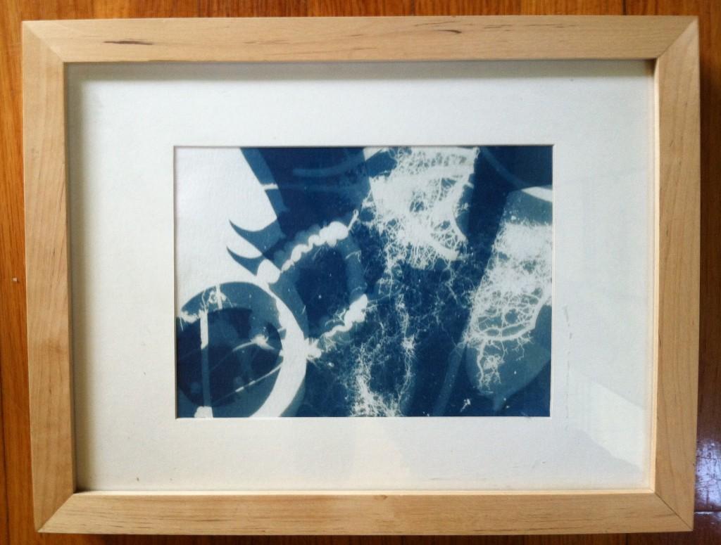 cyanotype3