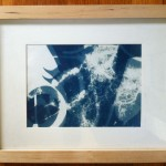 Cyanotype – Solar Prints Continued